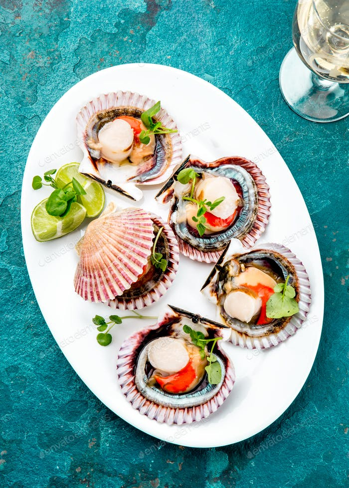 Raw opened shellfish scallops on white plate served with lemon and white wine, turquoise background