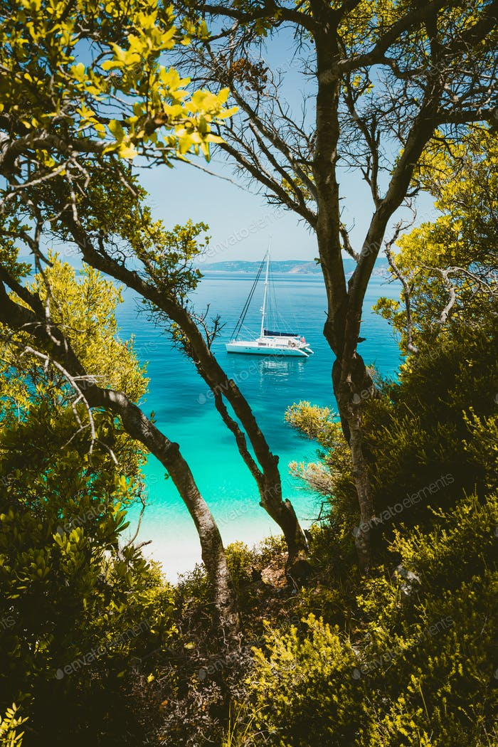 White catamaran yacht in clear blue transparent sea water surface hidden framed by branches of pine