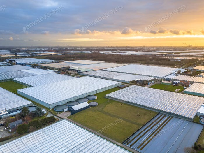 Aerial view of giant Greenhouse horticulture area