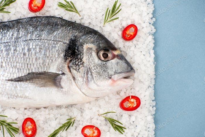 Fresh Dorado fish with rosemary and chili pepper on a salt cushi