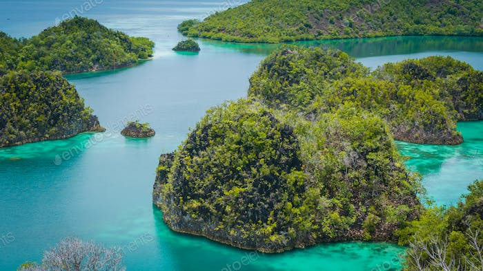 Close up of some Rock Island in Painemo, Raja Ampat, West Papua, Indonesia
