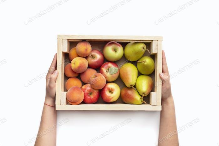 Gartenfrüchte in Öko-Holzkiste in wman Händen