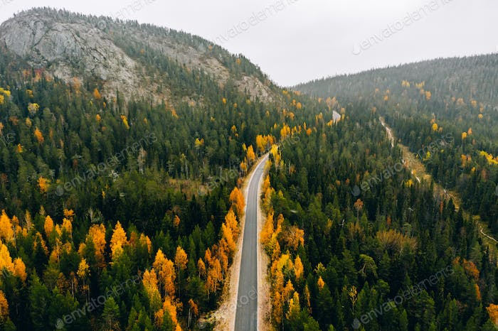 Aerial view of autumn color forest in the mountains and a road with car in Finland Lapland.