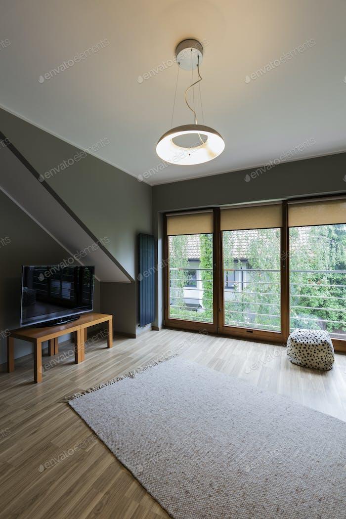 Cozy attic with TV set