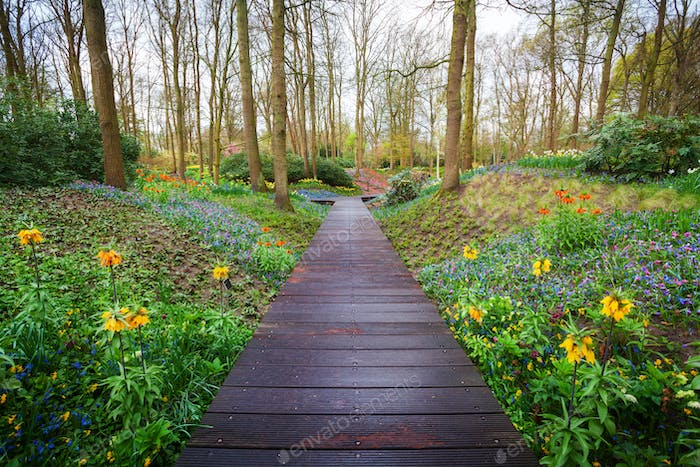 Wooden walkway through the Keukenhof park in Netherlands