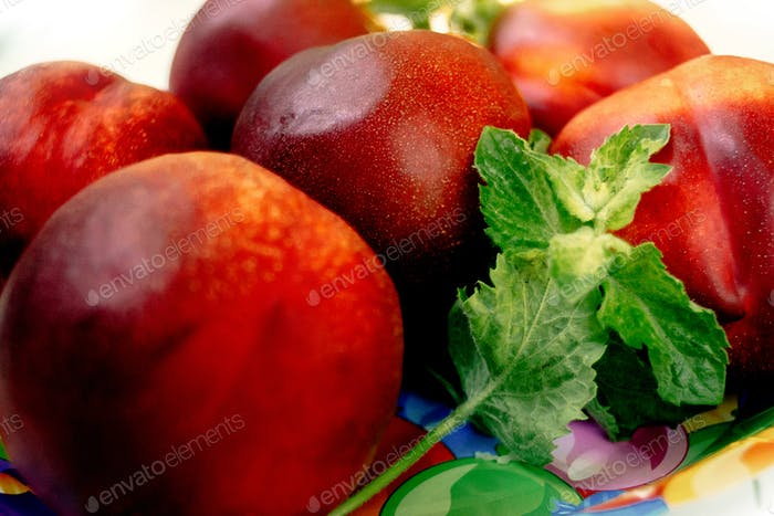 delicious nectarines and peaches on colorful plate appetizer, picnic outdoors