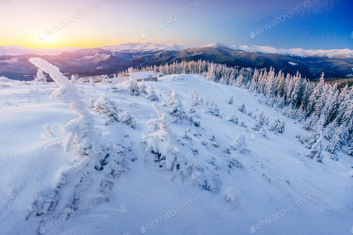 Fantastic winter landscape. Magic sunset in the mountains a frosty day. On the eve of the holiday