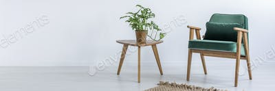 Chair and table with plant