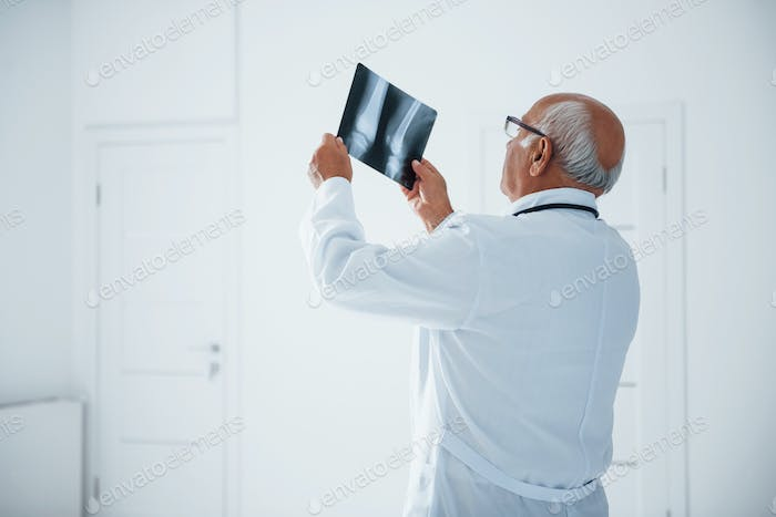 Senior man doctor in white uniform examines x-ray of human legs