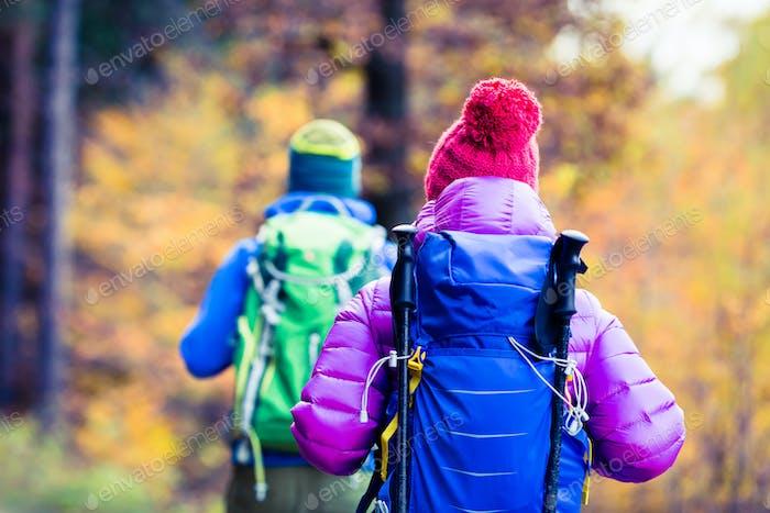 Mann und Frau glückliches Paar Wanderer zu Fuß im Herbst Wald