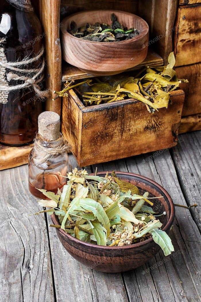 Harvest of medicinal herb