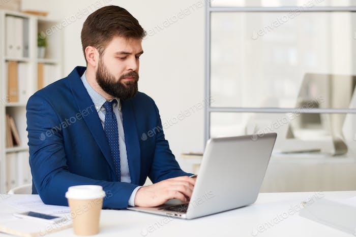 Businessman Browsing Internet
