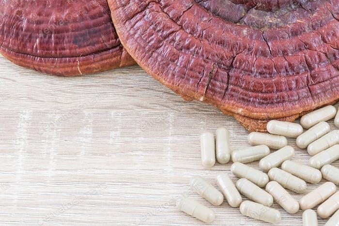 Ling zhi mushroom or Ganoderma lucidum capsule_-4