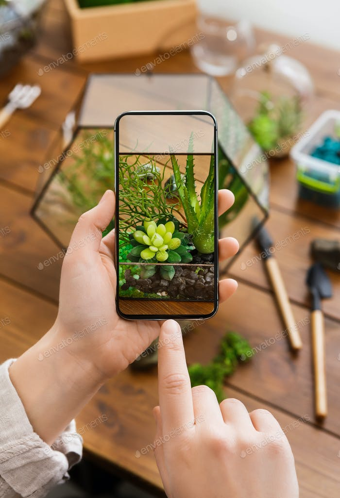 Woman making photo of plants. Plant snap application concept