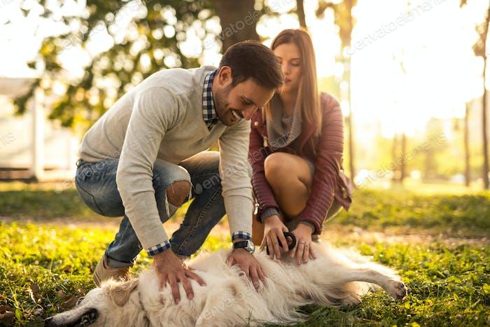 Spielen mit einem Hund