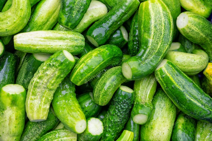 The natural green cucumber background