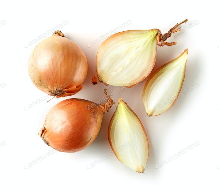 fresh raw onions