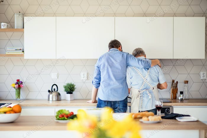 Rear view of adult son and senior father indoors at home, cooking