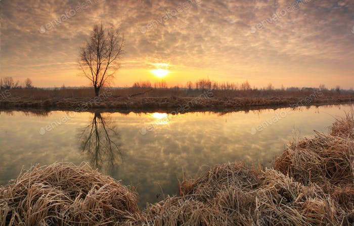 Surise under the river in spring