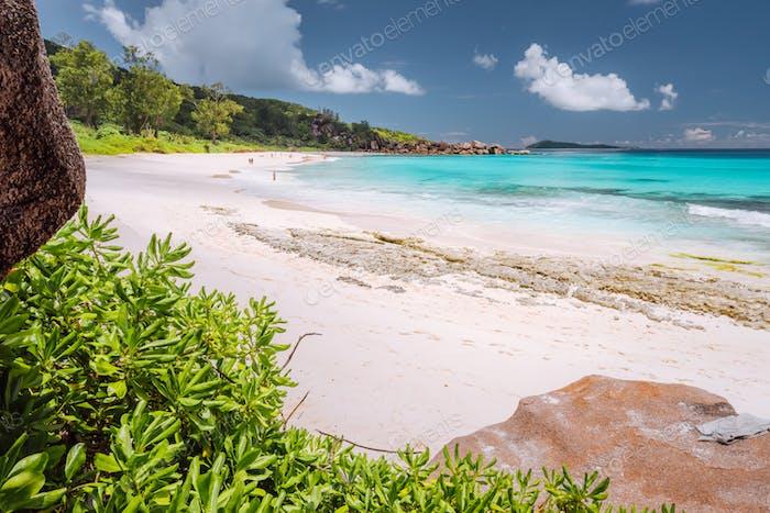 Tropische Küste auf der Insel La Digue, Seychellen. Üppige grüne Vegetation, türkisblaues Meer auf langen