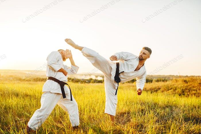 Zwei Karatekämpfer, treten in den Bauch