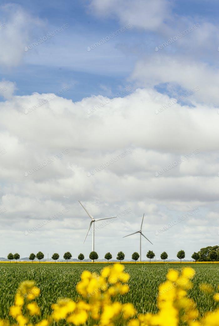 Wind turbines on field against cloudy sky