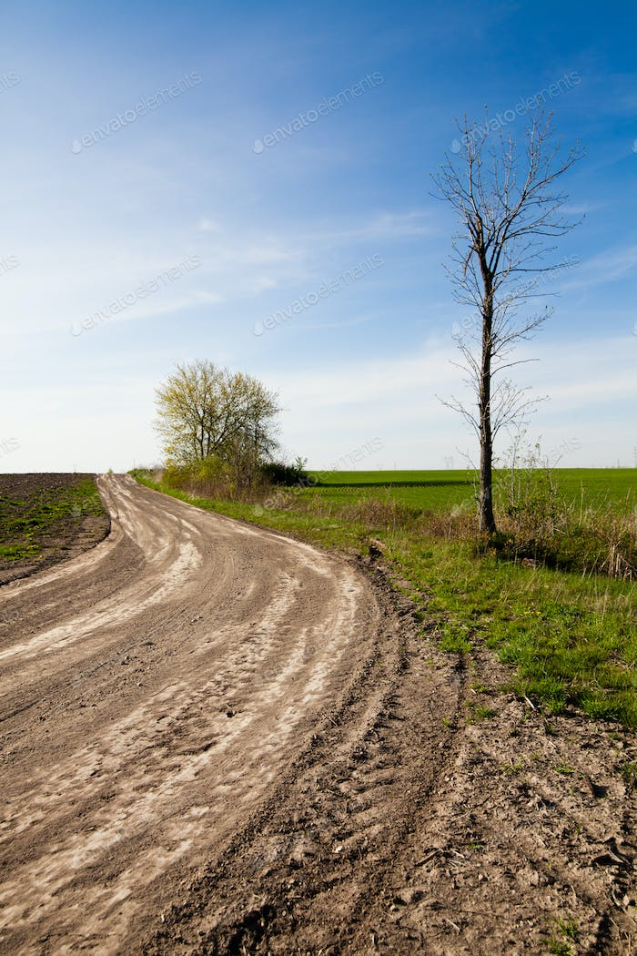 Country road and Blue Sky