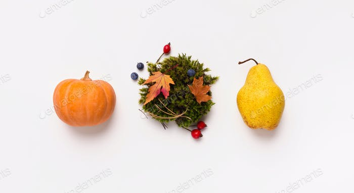 Three autumn fruits isolated on white background