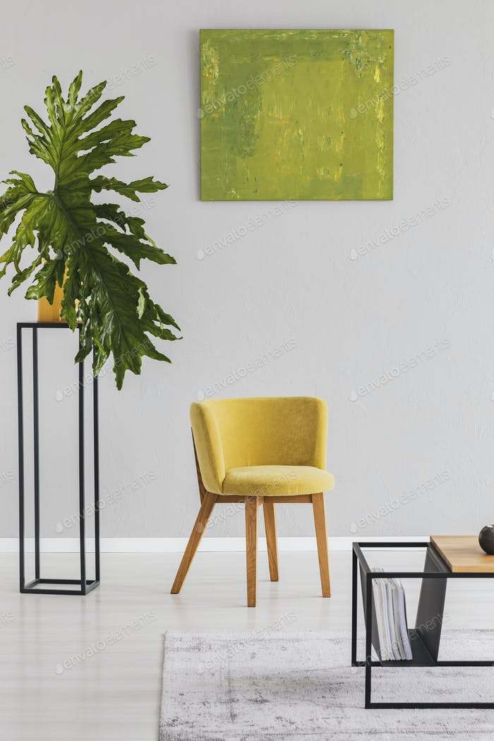Plant next to yellow chair in modern living room interior with g