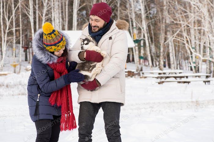 asiatische paar spielen mit Husky Welpen