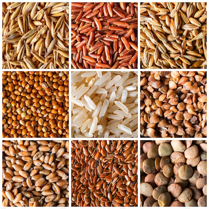 Collage of natural cereals grains as background