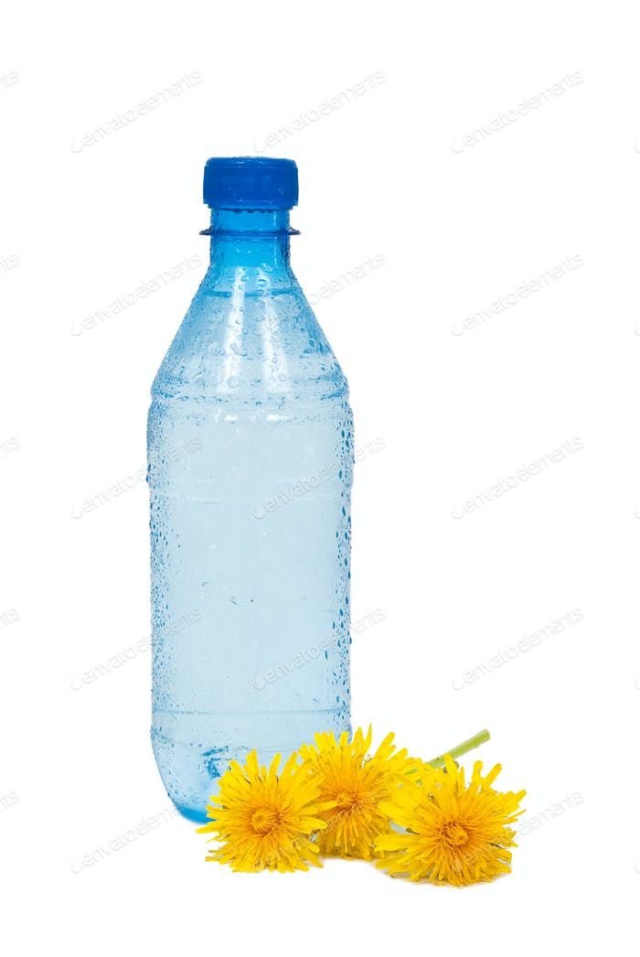 Water bottle and dandelions