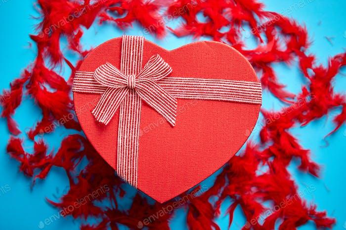 Rote, herzförmige Geschenkbox auf blauem Hintergrund unter roten Federn platziert
