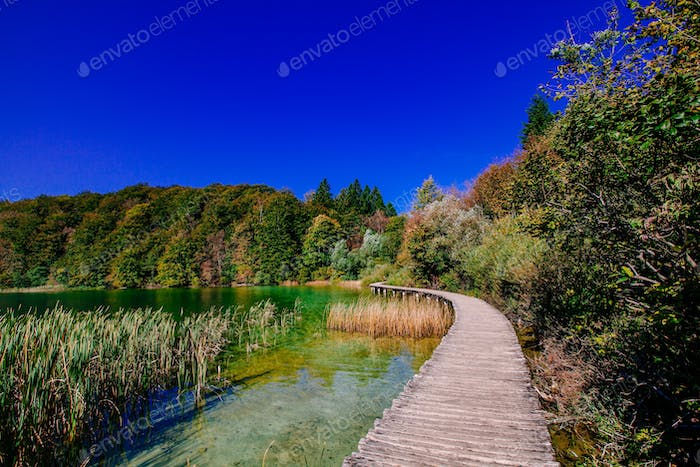 Touristic wooden pathway in Plitvice National Park, Croatia