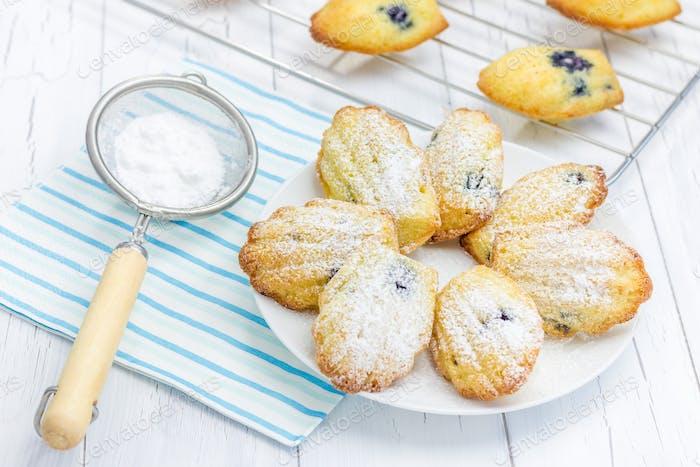 Sugar powdered madeleines with blueberries