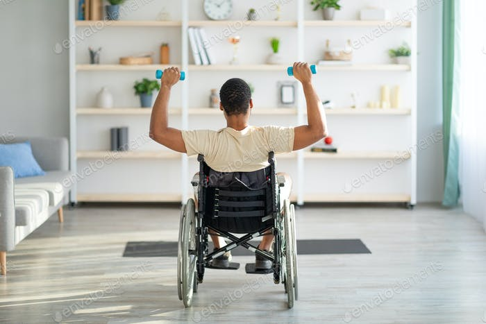 Back view of impaired black guy in wheelchair exercising with dumbbells at home. Sports and