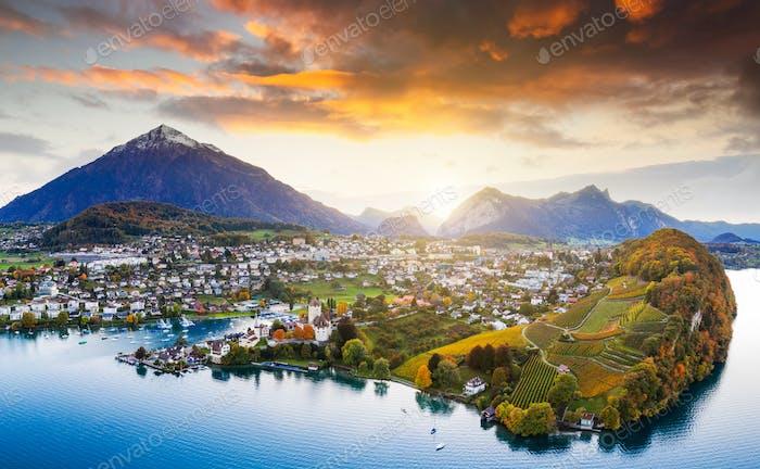 Vineyards with Spiez Castle in Spiez in the Bernese Oberland of Switzerland