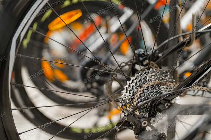 Mountain cycle in sports shop, focus on rear wheel