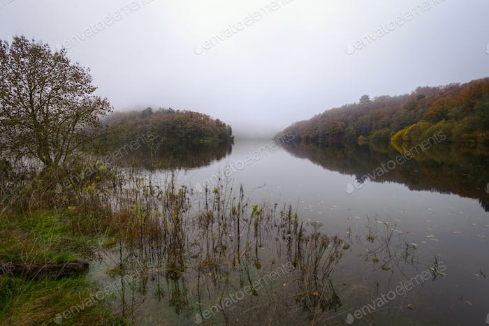 Foggy Morning next to a River with calm waters