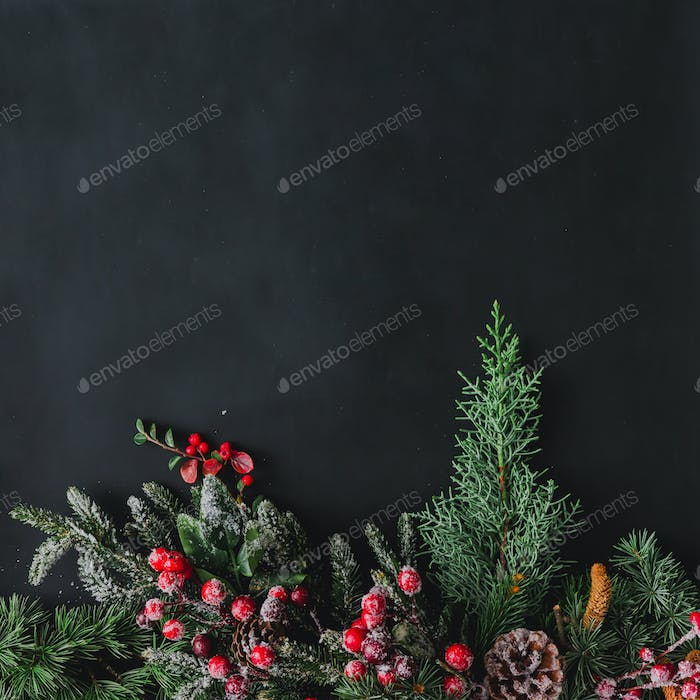 Christmas background made of natural winter things on dark blackboard.