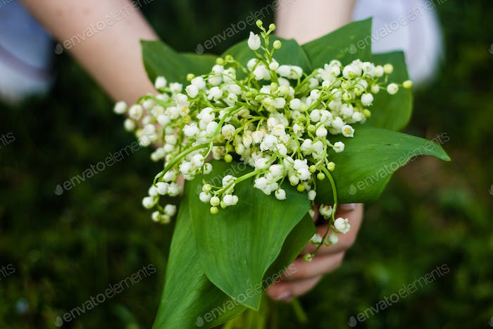 Woman holding bouquet of lilies of valley close up. Sunny warm day.