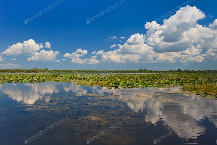 Thumbnail for Danube Delta, Romania