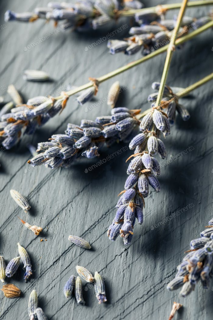 Organic Purple Dry Lavender