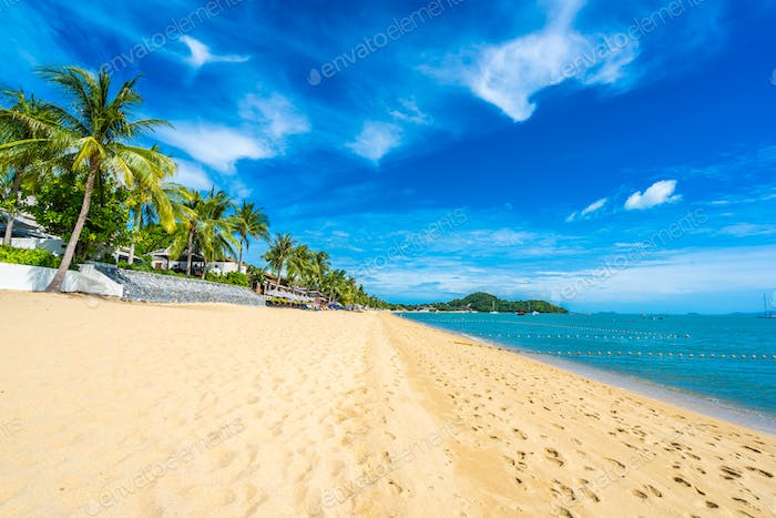 Beautiful tropical beach sea and ocean with coconut palm tree  a