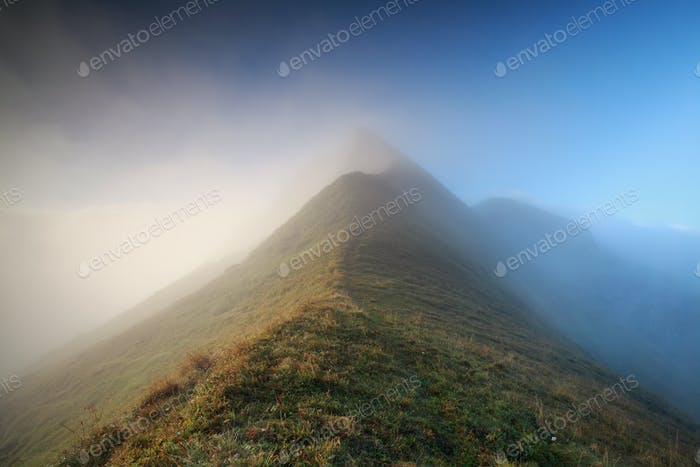 mountaintop in morning fog