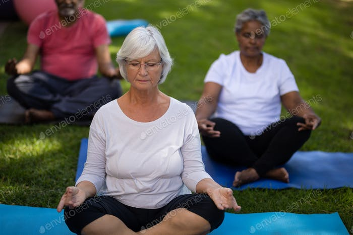 Senior woman with friends meditating at park