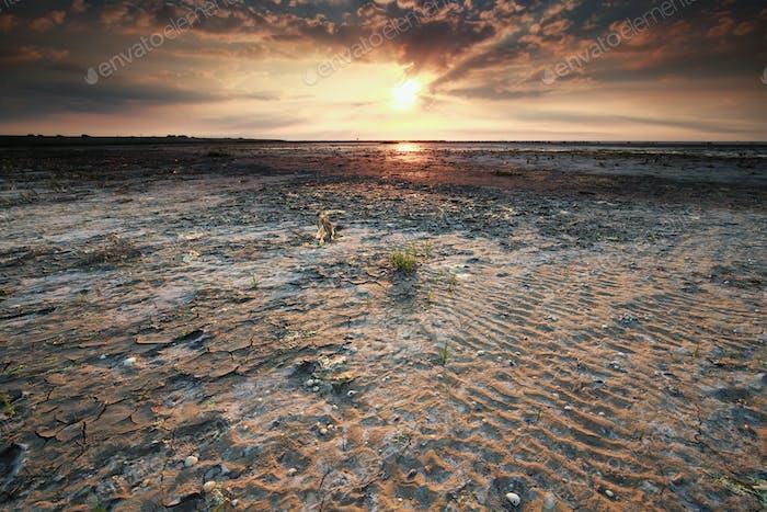 beautiful gold sunset on Wadden sea coast