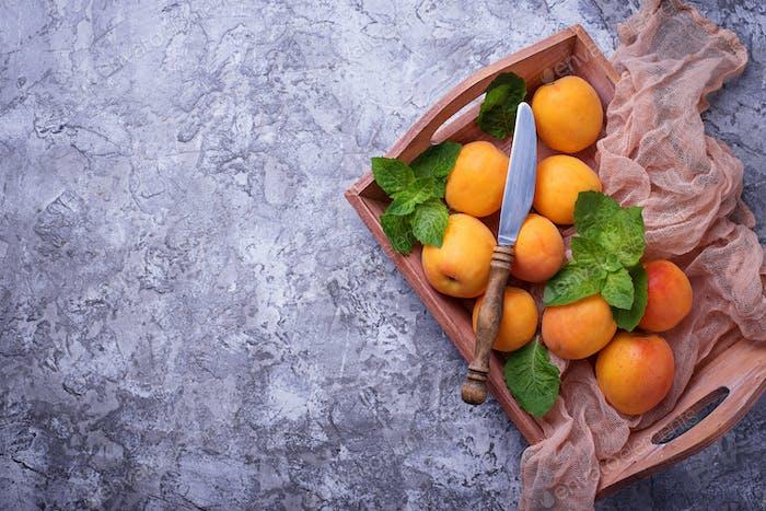 Sweet juicy apricots