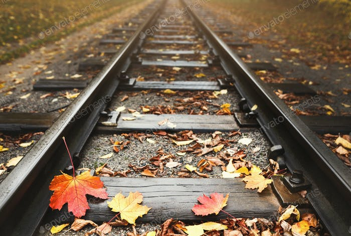 Railway strewn with fallen autumn leaves