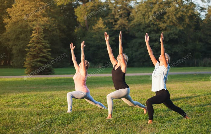 Yoga at park, group of mixed age women doing pose while sunset